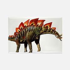 Stegosaurus Jurassic Dinosaur Rectangle Magnet