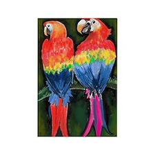 Parrots 11x17 Magnets