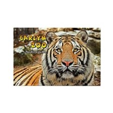 Cougar Rectangle Magnet (10 pack)