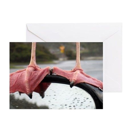 Seagull Feet Greeting Cards (Pk of 20)