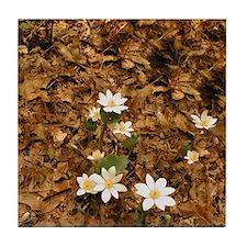 Woodland Flowers Tile Coaster