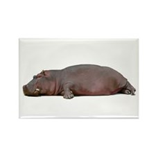 Sleeping Hippo Rectangle Magnet