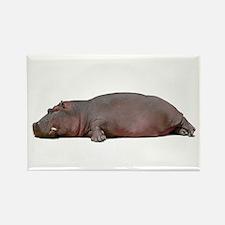 Sleeping Hippo Rectangle Magnet
