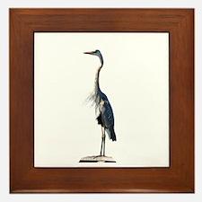 Great Blue Heron #2 Framed Tile