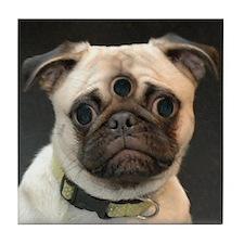 3-Eyed Freak Pug photo Tile Coaster