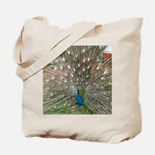 Tote Bag with White-eyed Peacock displaying