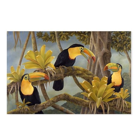 Toucans Postcards (Package of 8)