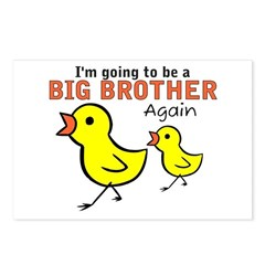 Chicks Big Secret Big Brother Again Postcards (Pac