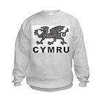 Vintage Cymru Kids Sweatshirt
