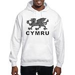 Vintage Cymru Hooded Sweatshirt