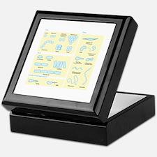 Morphology Keepsake Box