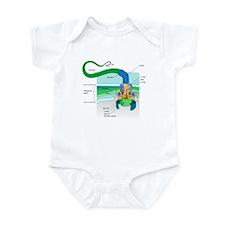 Morphology Infant Bodysuit