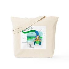 Morphology Tote Bag