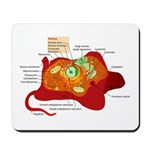 Animal Cell Mousepad