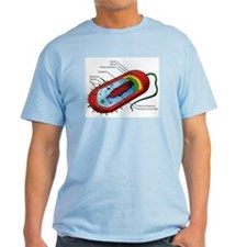 Bacteria Diagram T-Shirt