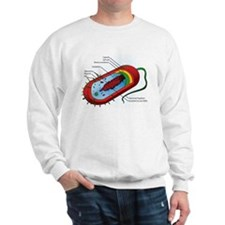 Bacteria Diagram Sweatshirt