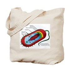 Bacteria Diagram Tote Bag