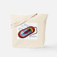 Bacteria Diagram Tote Bag