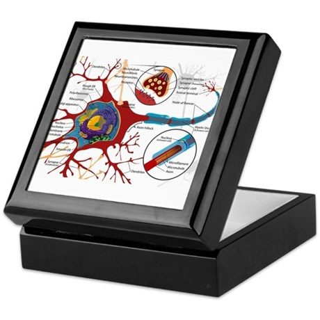 Neuron cell Keepsake Box