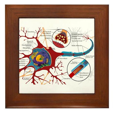 Neuron cell Framed Tile