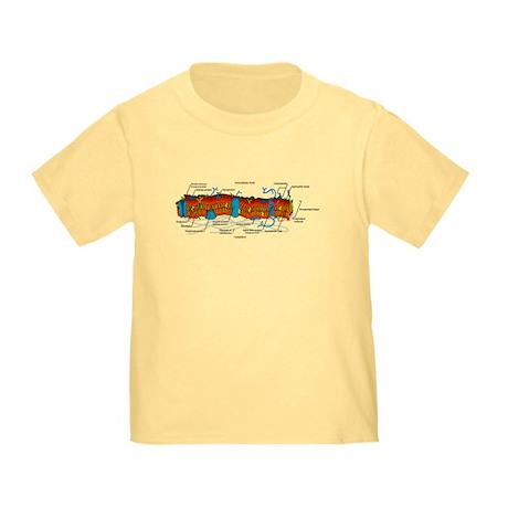 Cell Membrane Toddler T-Shirt