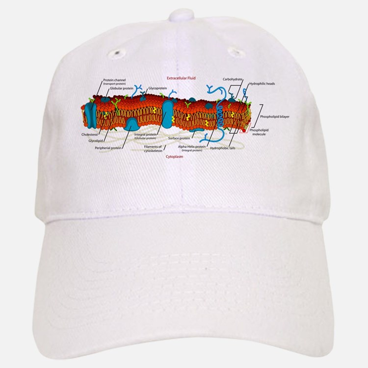 Cell Membrane Baseball Baseball Cap