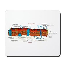 Cell Membrane Mousepad