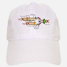 DNA Synthesis Baseball Baseball Cap