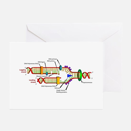 DNA Synthesis Greeting Cards (Pk of 10)