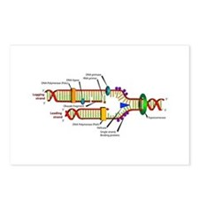DNA Synthesis Postcards (Package of 8)