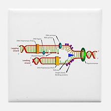 DNA Synthesis Tile Coaster