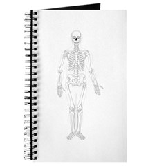 Human Skeleton Journal