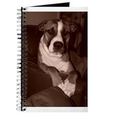 Cute American bullys Journal