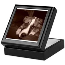 Cool Amstaff art Keepsake Box