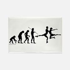 Skate Evolution Rectangle Magnet (10 pack)