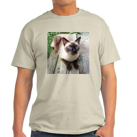 Siamese Cat Bench Light T-Shirt
