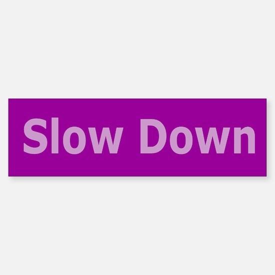 #1 SLOW DOWN (bumper stickler)