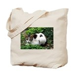Feral Cat Colony Tote Bag
