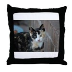 Feral Cat Colony Throw Pillow