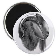 Boer Goat Buck Magnet