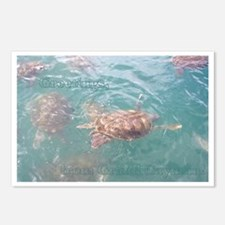 Grand Cayman, Postcards (package Of 8)