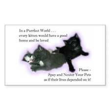 Spay Neuter Kittens Rectangle Decal