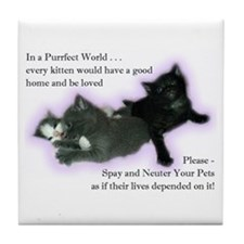 Spay Neuter Kittens Tile Coaster
