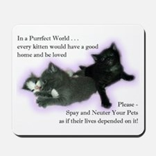 Spay Neuter Kittens Mousepad