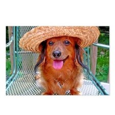 Vacation Doxie Postcards (Package of 8)