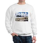 Forks, WA. 1 Sweatshirt