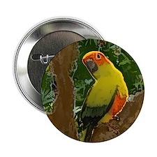 Jungle Sun Conure Button