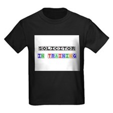 Solicitor In Training T