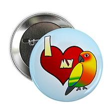 Love Sun Conure Button