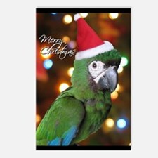 Severe Macaw Christmas Postcards (8 Pack)